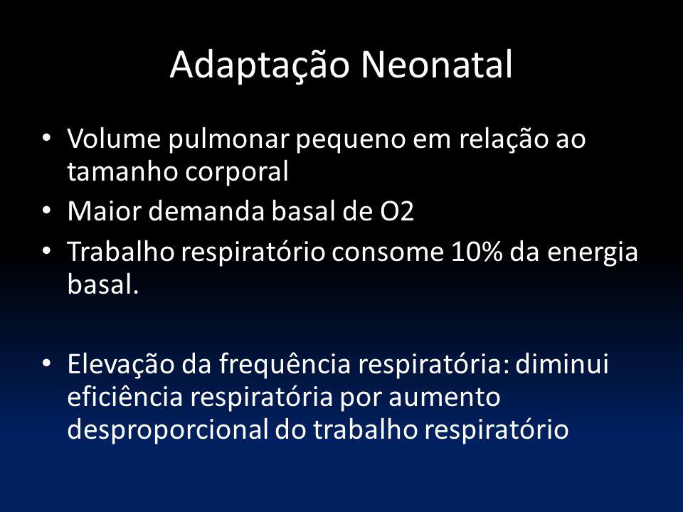 Adaptação Neonatal Volume pulmonar pequeno em relação ao tamanho corporal. Maior demanda basal de O2.