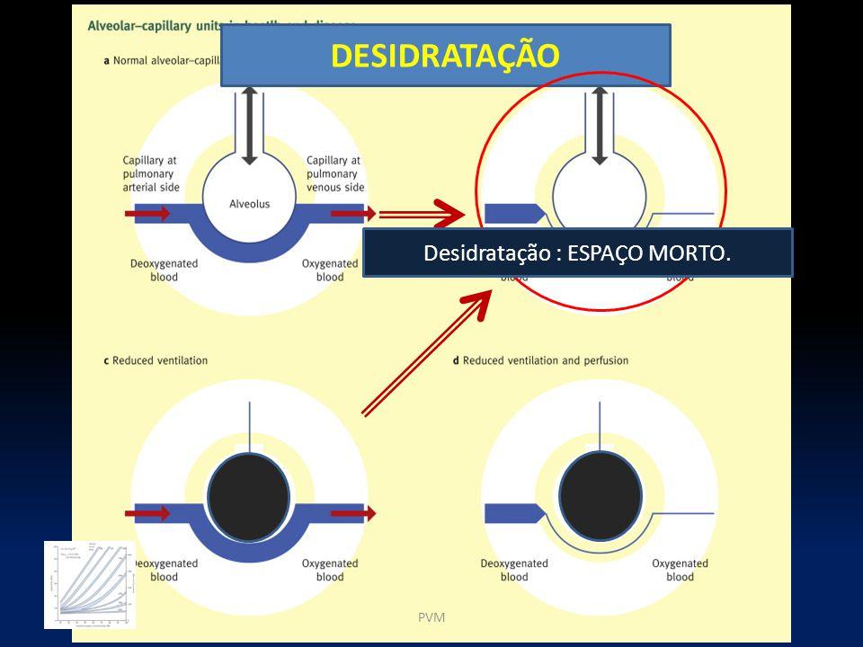 Desidratação : ESPAÇO MORTO.