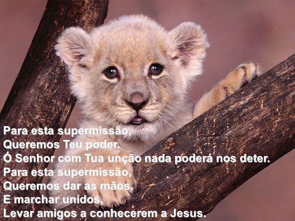 Para esta supermissão, Queremos Teu poder. Ó Senhor com Tua unção nada poderá nos deter. Queremos dar as mãos.