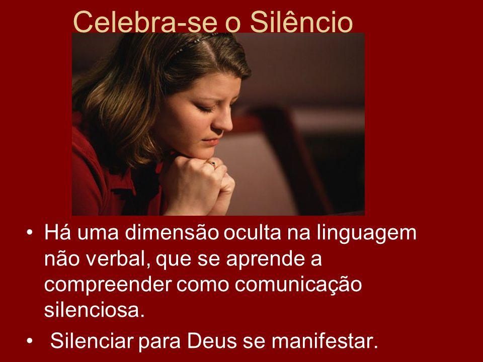 Celebra-se o Silêncio Há uma dimensão oculta na linguagem não verbal, que se aprende a compreender como comunicação silenciosa.