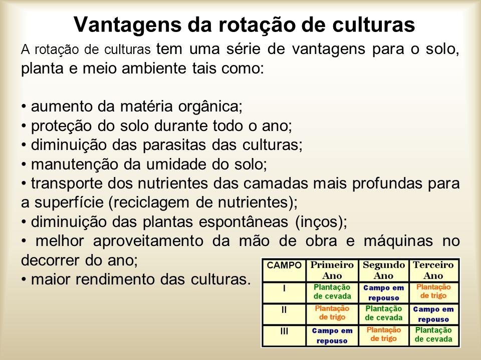 Vantagens da rotação de culturas