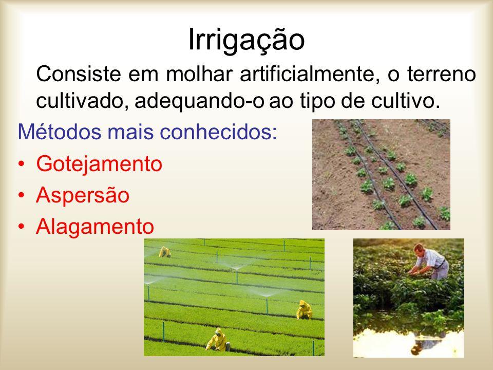 Irrigação Consiste em molhar artificialmente, o terreno cultivado, adequando-o ao tipo de cultivo. Métodos mais conhecidos: