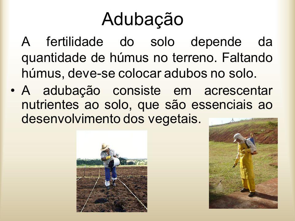 Adubação A fertilidade do solo depende da quantidade de húmus no terreno. Faltando húmus, deve-se colocar adubos no solo.
