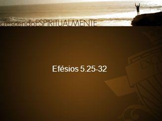 Efésios 5.25-32