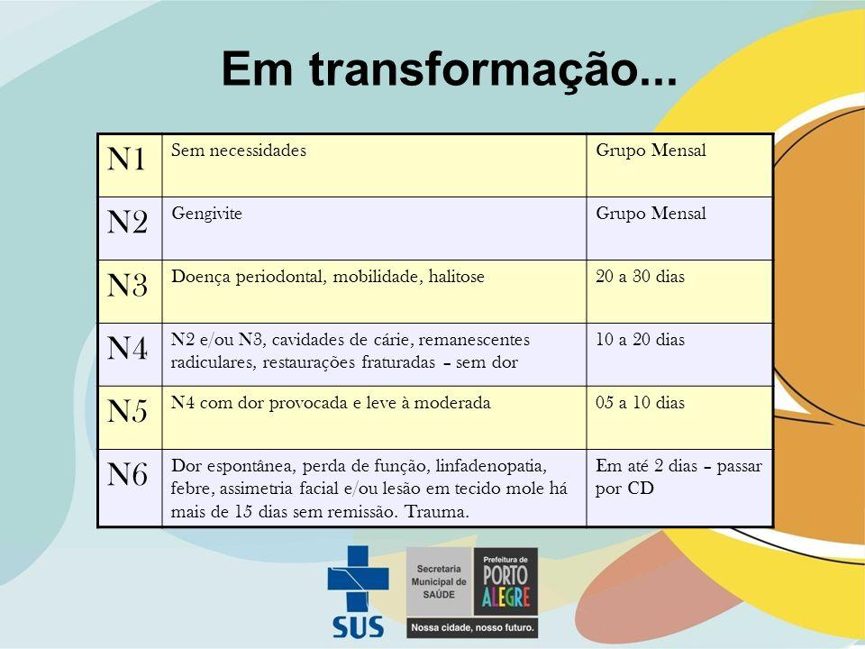 Em transformação... N1 N2 N3 N4 N5 N6 Sem necessidades Grupo Mensal