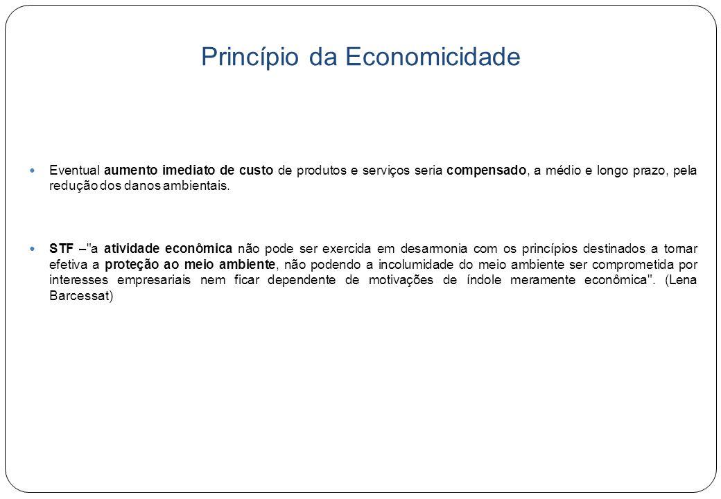 Princípio da Economicidade