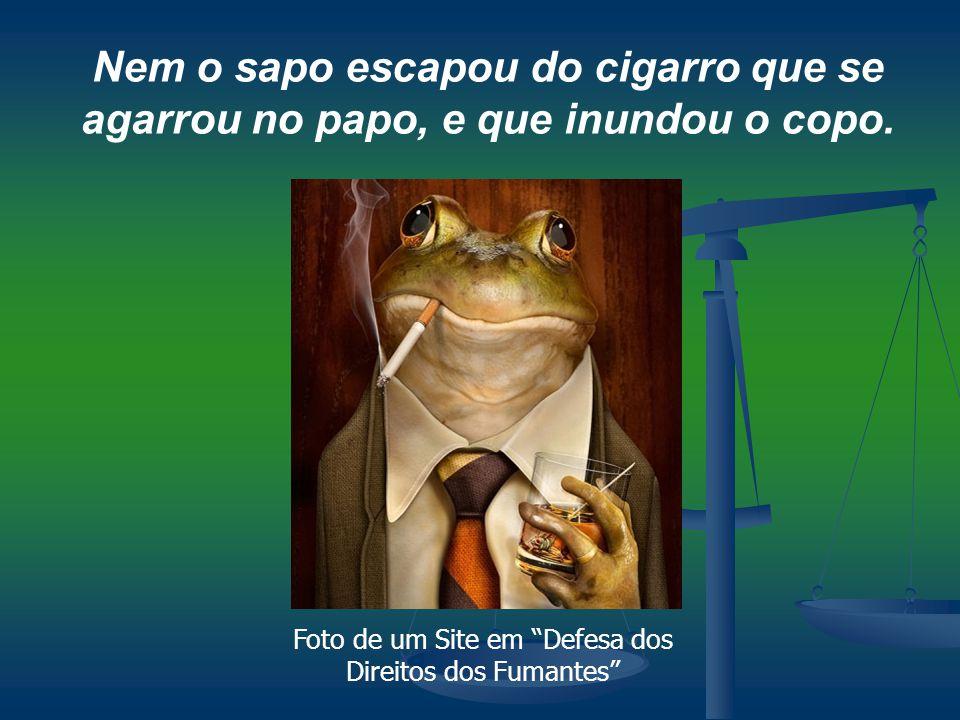Foto de um Site em Defesa dos Direitos dos Fumantes