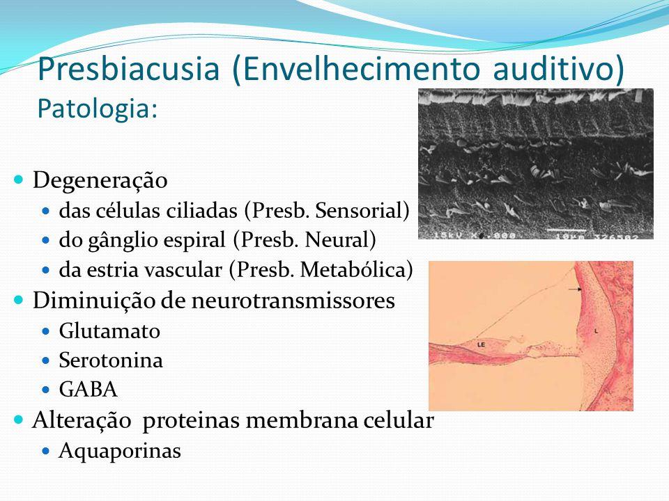 Presbiacusia (Envelhecimento auditivo) Patologia: