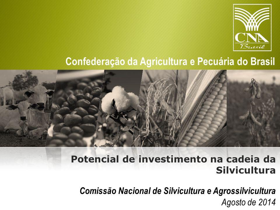Potencial de investimento na cadeia da Silvicultura