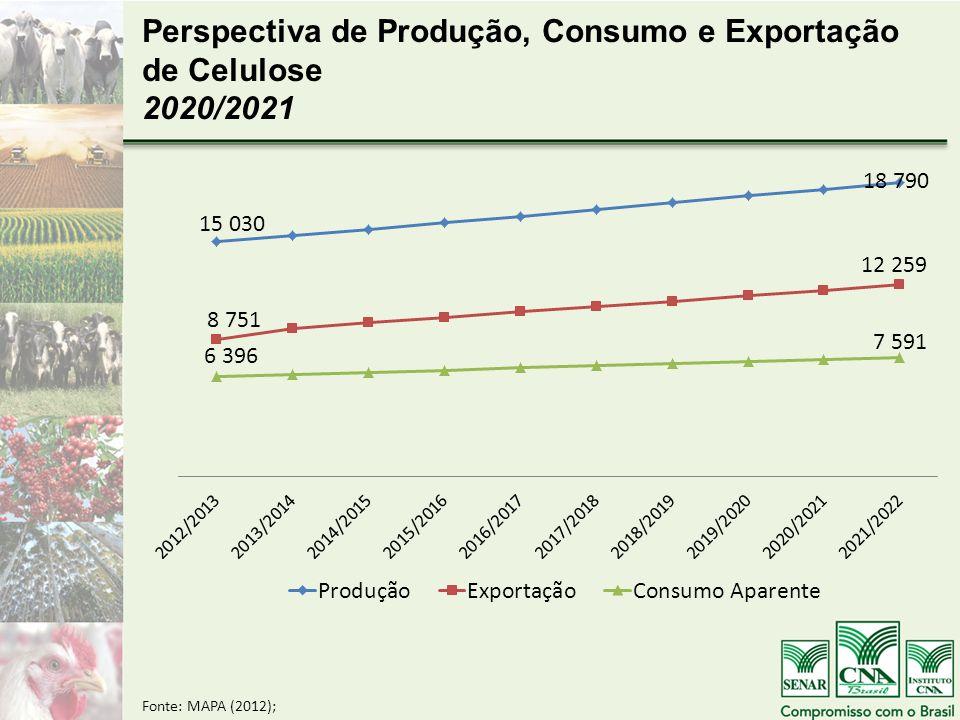 Perspectiva de Produção, Consumo e Exportação de Celulose 2020/2021
