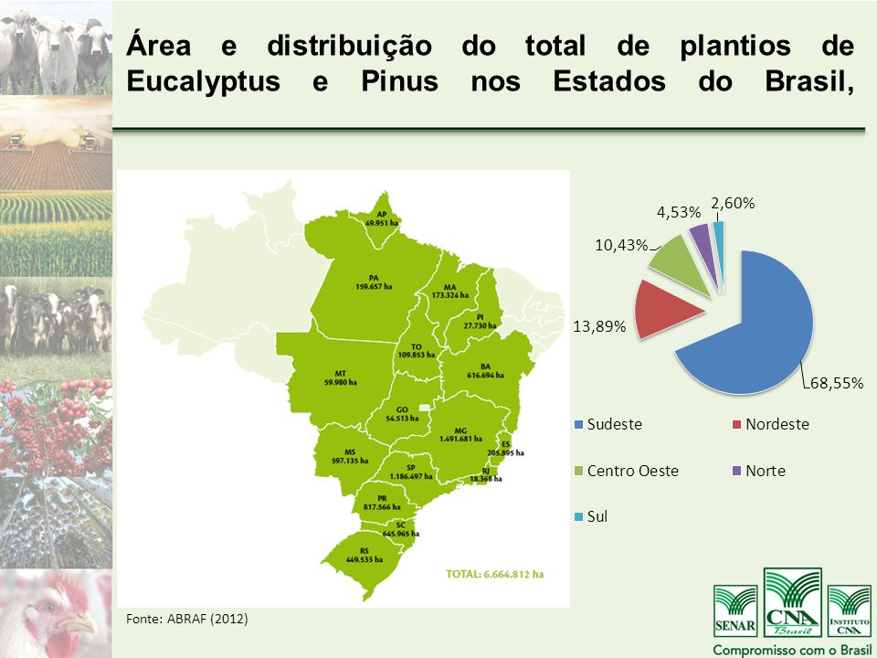 Área e distribuição do total de plantios de Eucalyptus e Pinus nos Estados do Brasil,