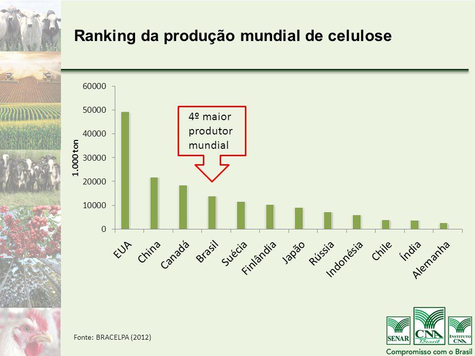 Ranking da produção mundial de celulose