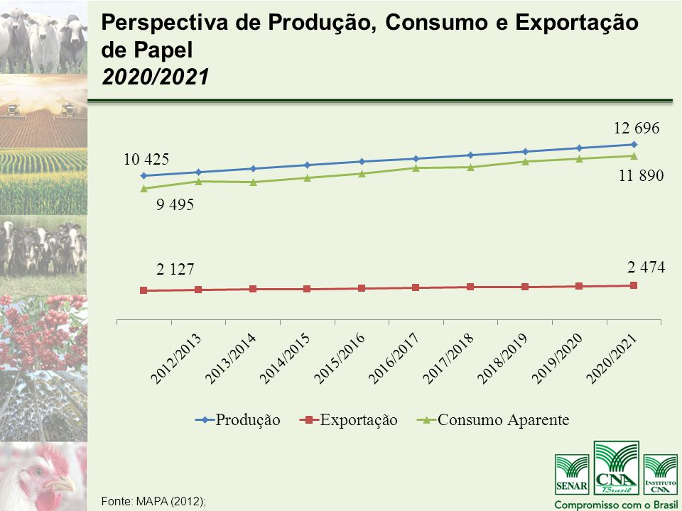 Perspectiva de Produção, Consumo e Exportação de Papel 2020/2021