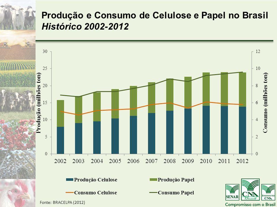 Produção e Consumo de Celulose e Papel no Brasil Histórico 2002-2012