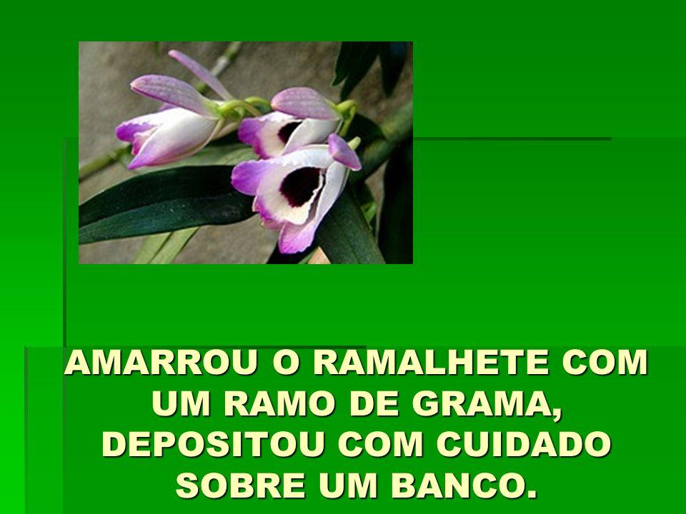 AMARROU O RAMALHETE COM UM RAMO DE GRAMA, DEPOSITOU COM CUIDADO SOBRE UM BANCO.