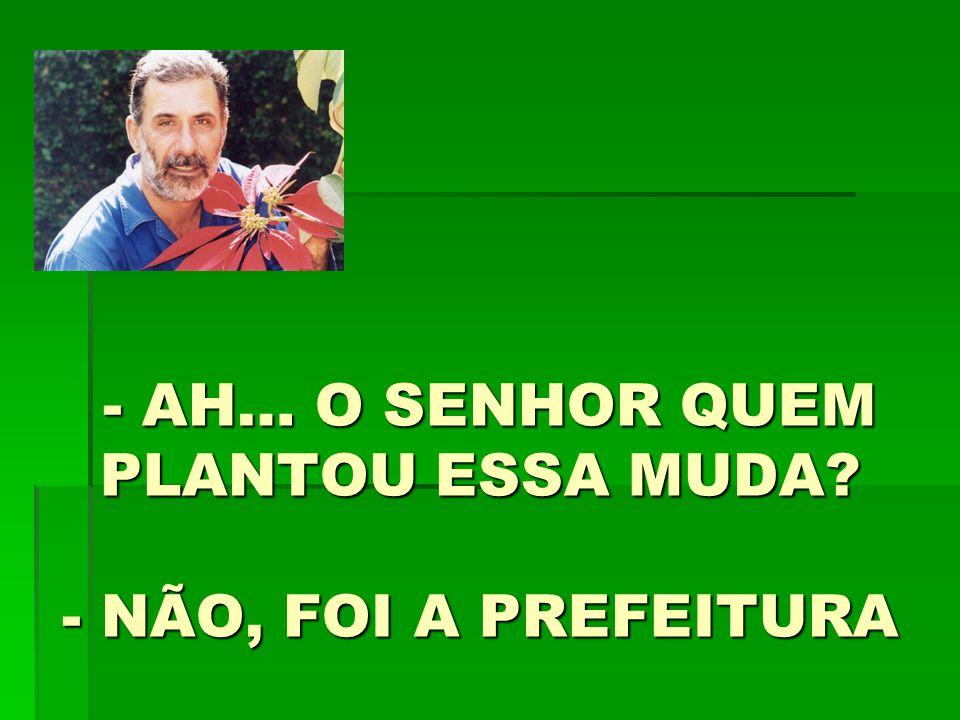 - AH… O SENHOR QUEM PLANTOU ESSA MUDA - NÃO, FOI A PREFEITURA