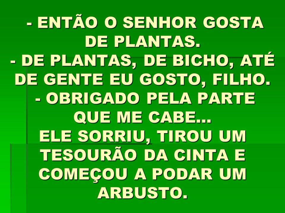 - ENTÃO O SENHOR GOSTA DE PLANTAS