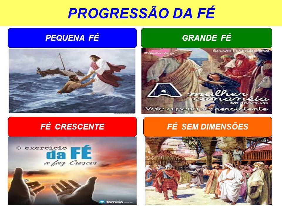 PROGRESSÃO DA FÉ PEQUENA FÉ GRANDE FÉ FÉ CRESCENTE FÉ SEM DIMENSÕES