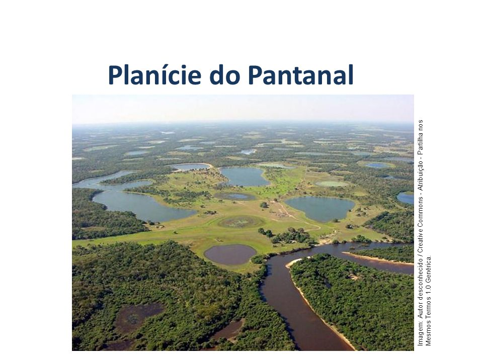 Planície do Pantanal GEOGRAFIA, 7º Ano