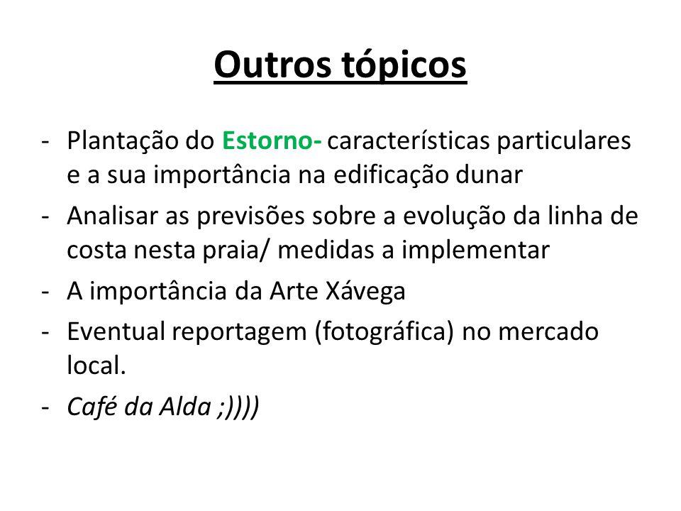 Outros tópicos Plantação do Estorno- características particulares e a sua importância na edificação dunar.