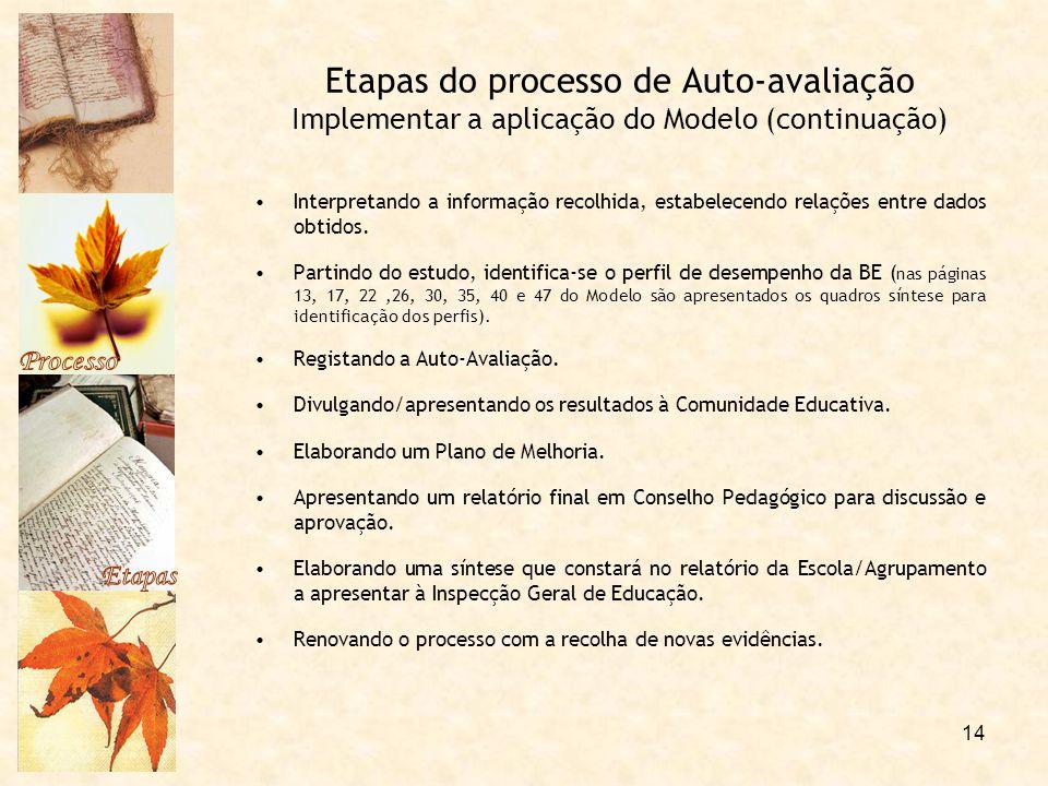 Processo Etapas. Etapas do processo de Auto-avaliação Implementar a aplicação do Modelo (continuação)