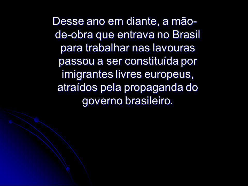 Desse ano em diante, a mão-de-obra que entrava no Brasil para trabalhar nas lavouras passou a ser constituída por imigrantes livres europeus, atraídos pela propaganda do governo brasileiro.