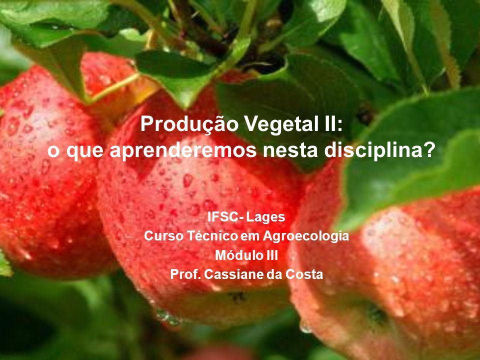 Produção Vegetal II: o que aprenderemos nesta disciplina