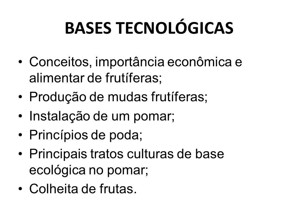 BASES TECNOLÓGICAS Conceitos, importância econômica e alimentar de frutíferas; Produção de mudas frutíferas;