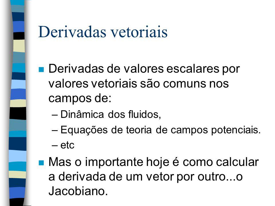 Derivadas vetoriais Derivadas de valores escalares por valores vetoriais são comuns nos campos de: Dinâmica dos fluidos,