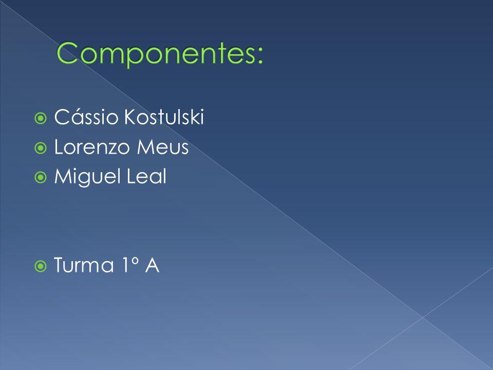 Componentes: Cássio Kostulski Lorenzo Meus Miguel Leal Turma 1º A