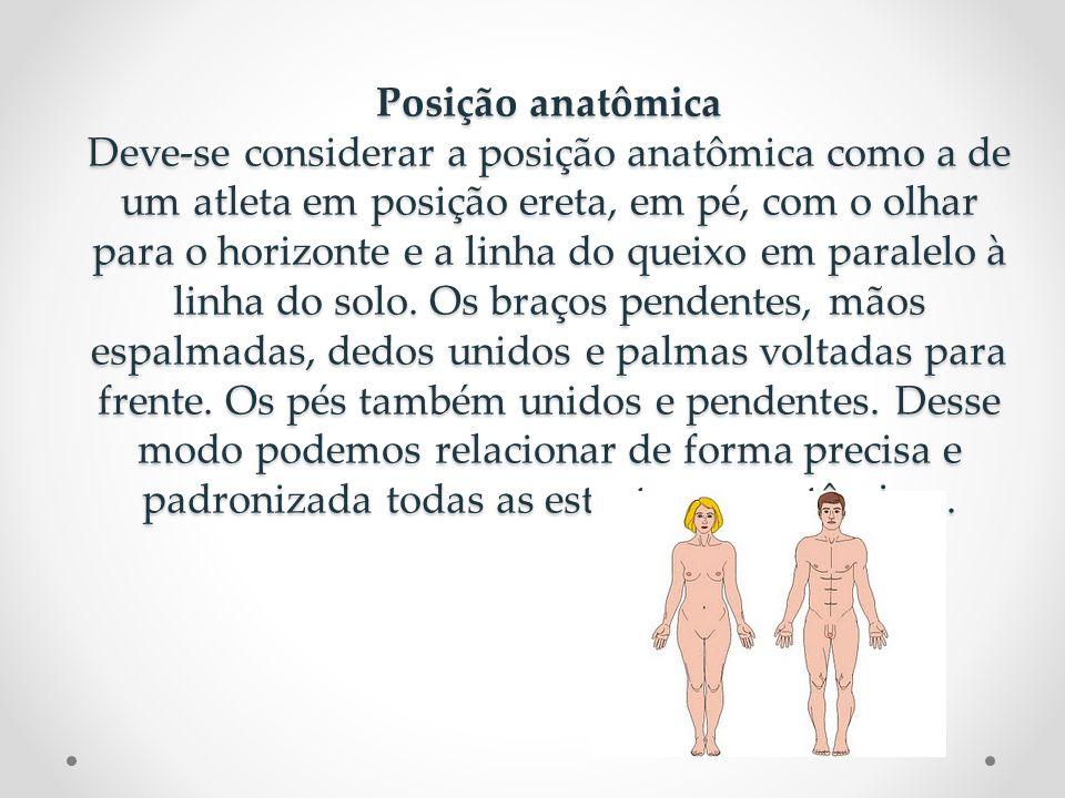 Posição anatômica Deve-se considerar a posição anatômica como a de um atleta em posição ereta, em pé, com o olhar para o horizonte e a linha do queixo em paralelo à linha do solo.