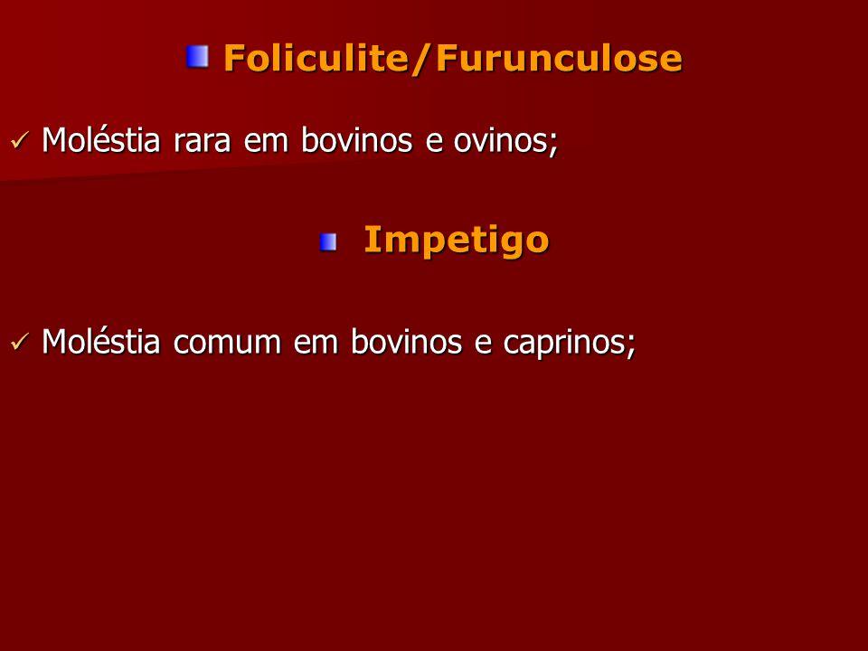 Foliculite/Furunculose