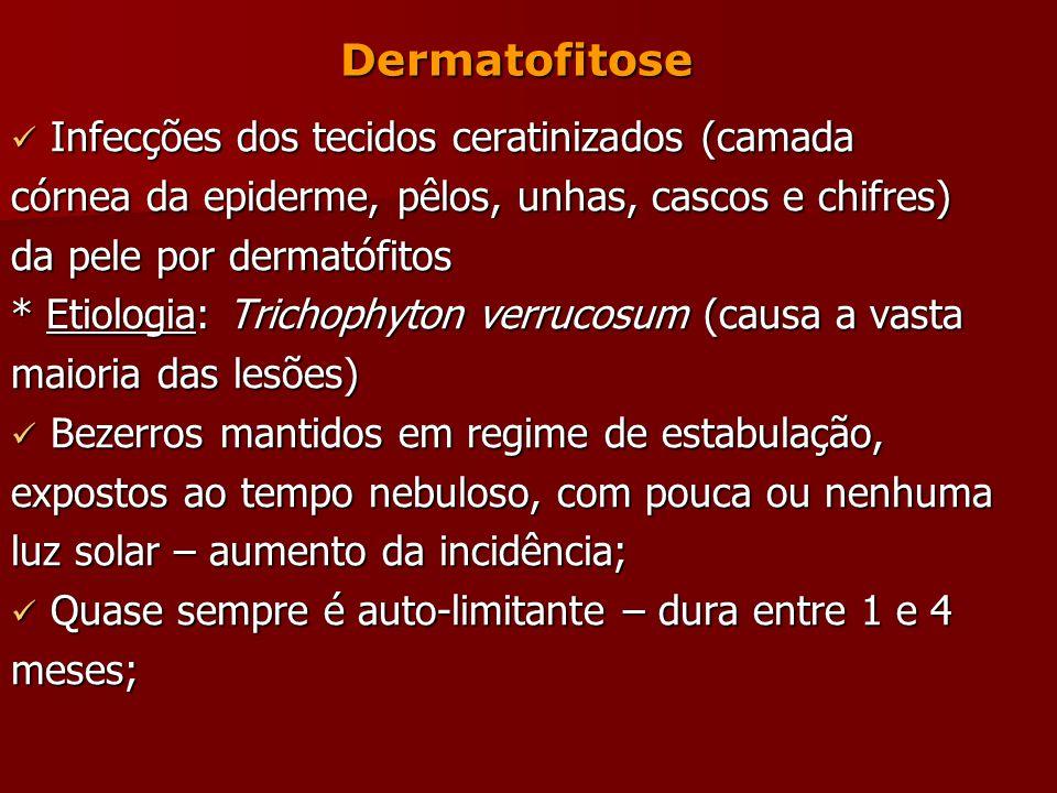 Dermatofitose Infecções dos tecidos ceratinizados (camada. córnea da epiderme, pêlos, unhas, cascos e chifres)