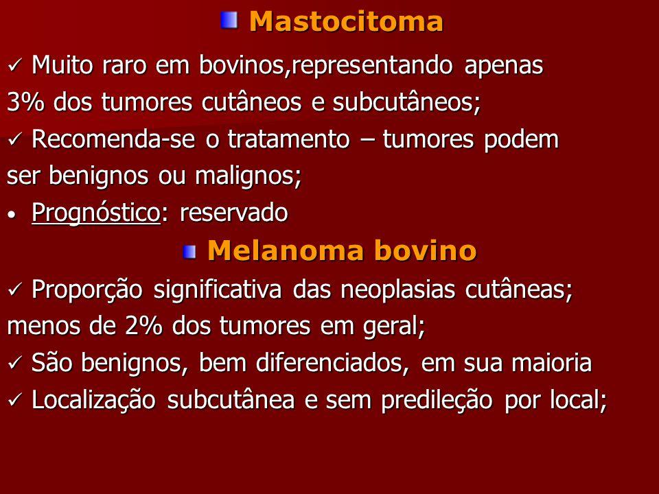Mastocitoma Melanoma bovino Muito raro em bovinos,representando apenas