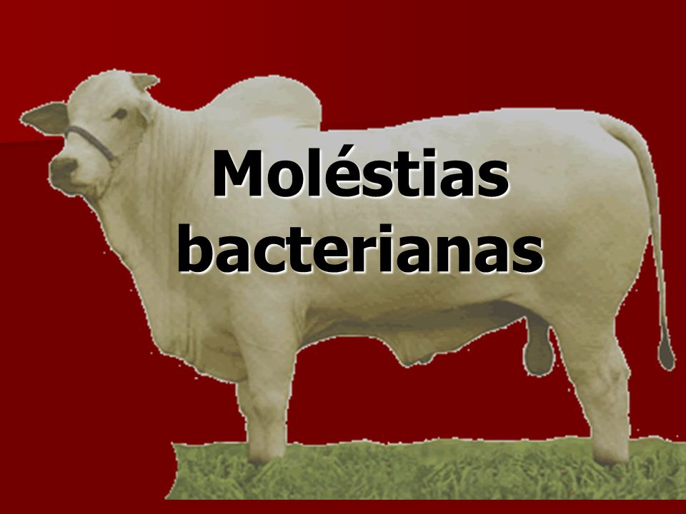Moléstias bacterianas