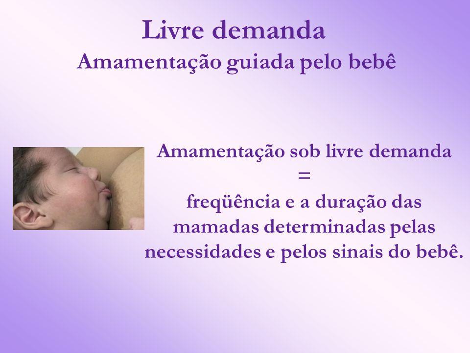 Amamentação guiada pelo bebê Amamentação sob livre demanda
