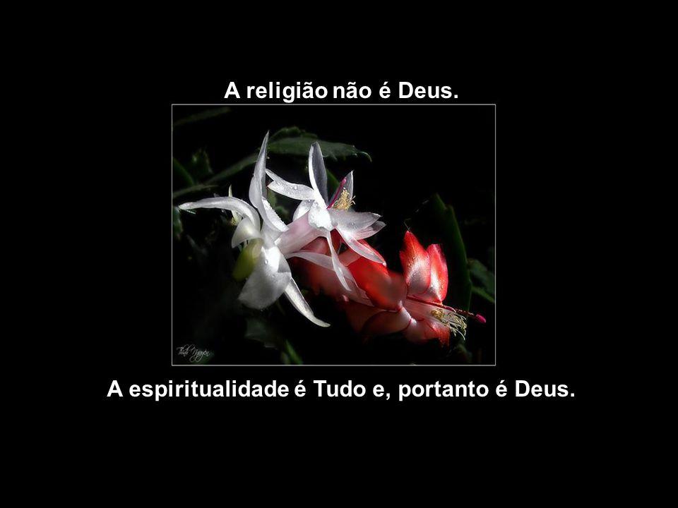 A espiritualidade é Tudo e, portanto é Deus.