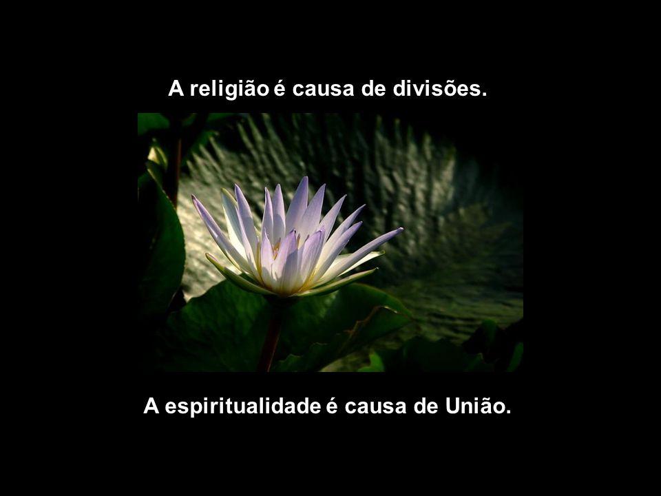 A religião é causa de divisões. A espiritualidade é causa de União.