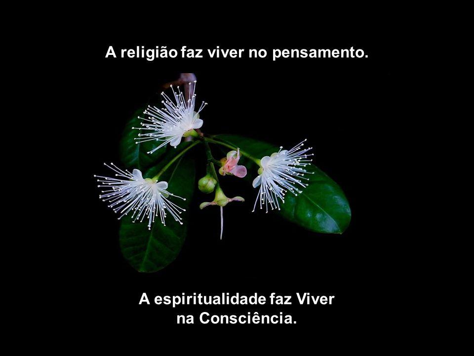 A religião faz viver no pensamento. A espiritualidade faz Viver