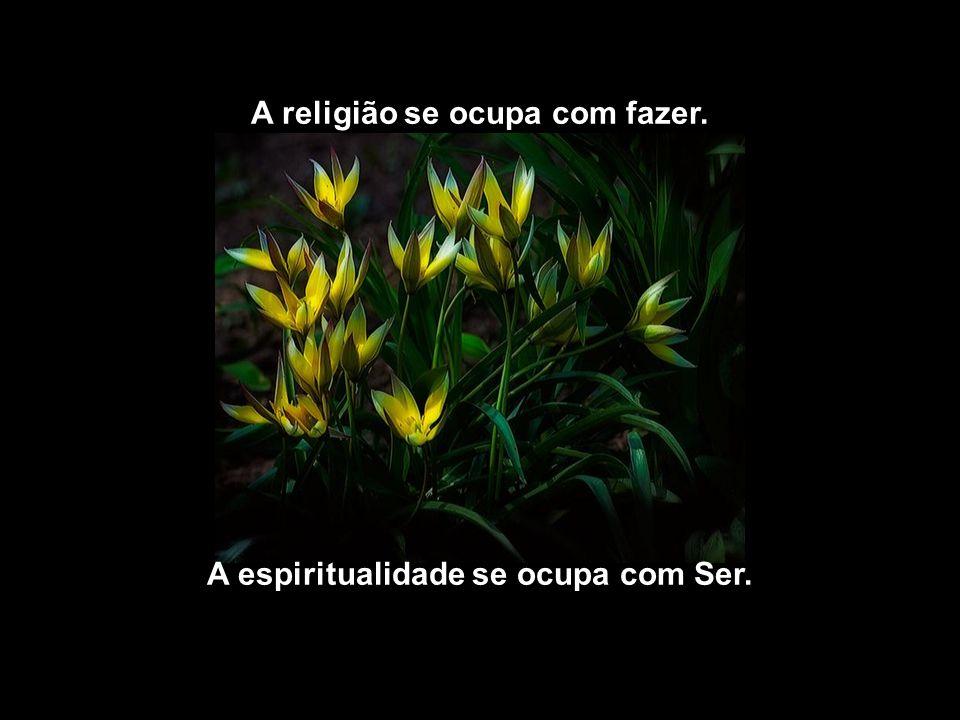 A religião se ocupa com fazer. A espiritualidade se ocupa com Ser.