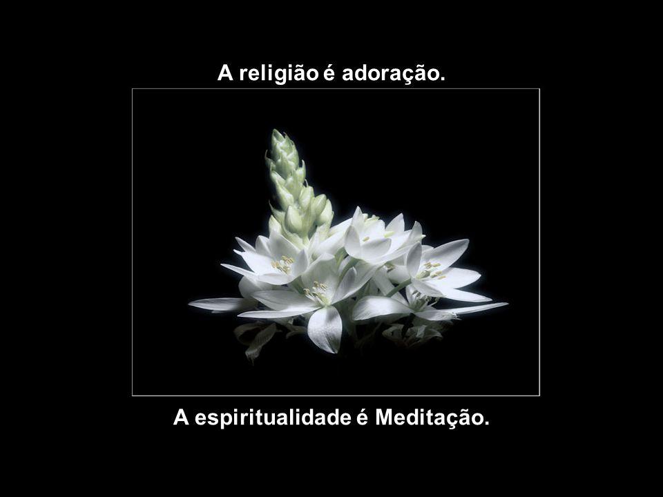 A espiritualidade é Meditação.
