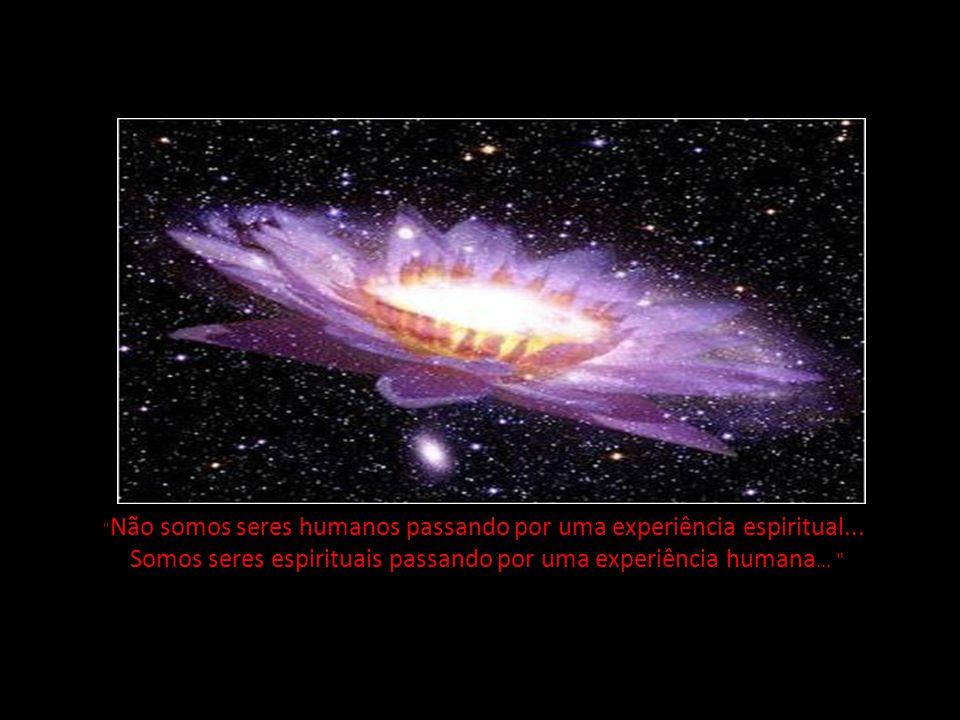 Somos seres espirituais passando por uma experiência humana...