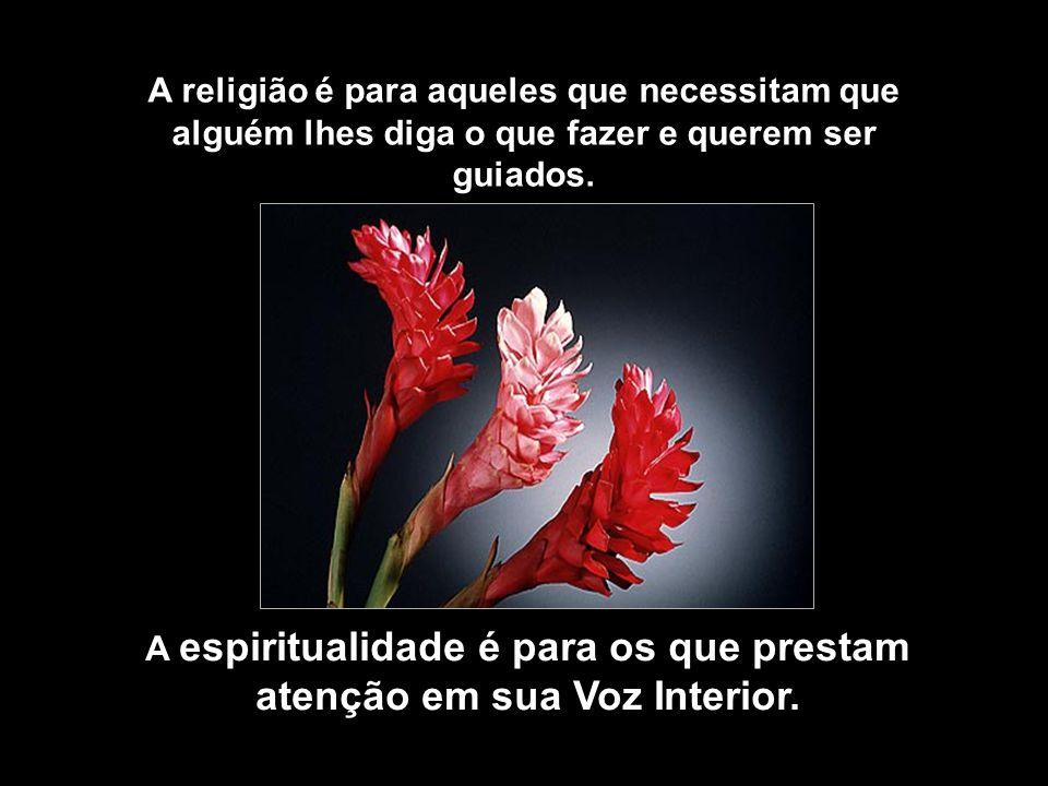 A espiritualidade é para os que prestam atenção em sua Voz Interior.
