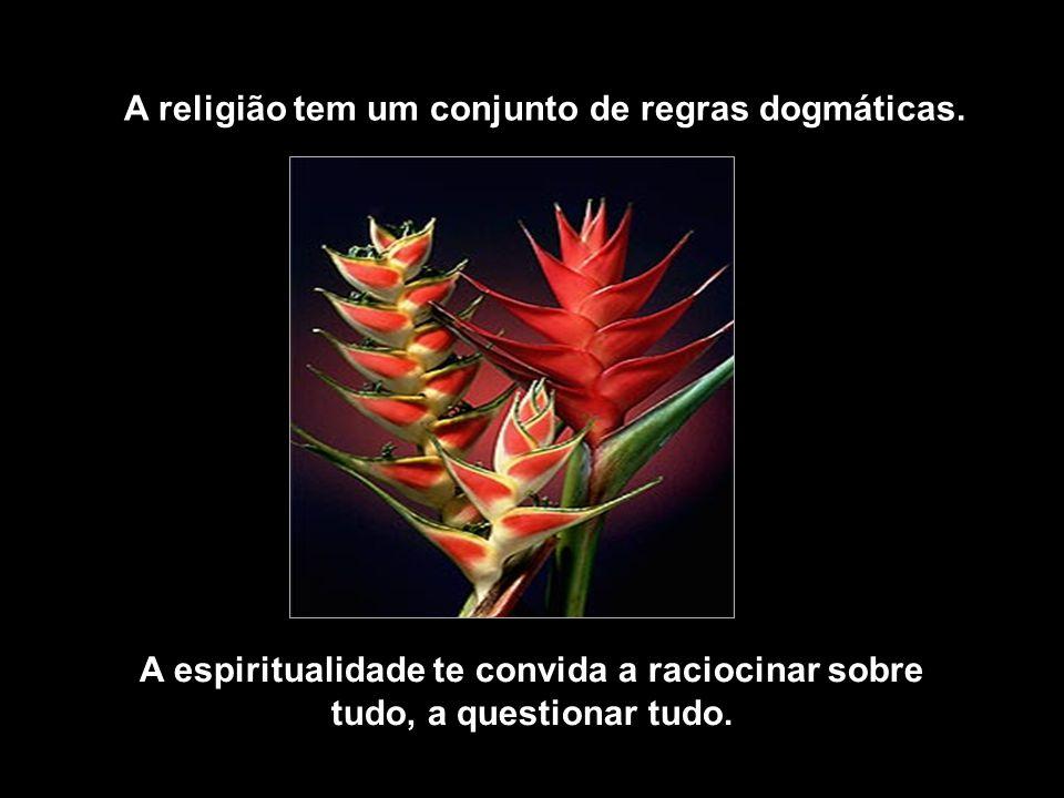 A religião tem um conjunto de regras dogmáticas.