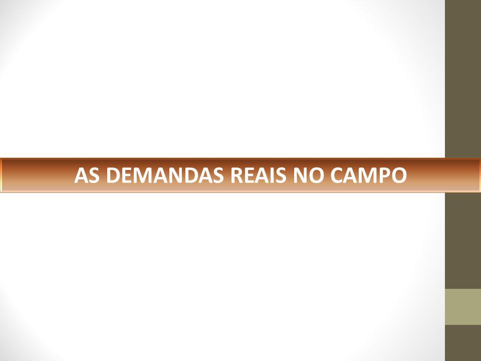 AS DEMANDAS REAIS NO CAMPO