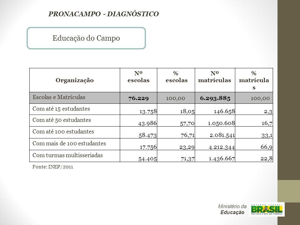 Educação do Campo PRONACAMPO - DIAGNÓSTICO Organização Nº escolas %
