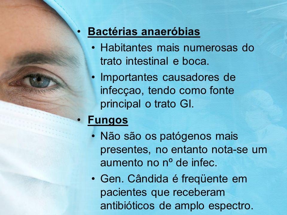 Bactérias anaeróbias Habitantes mais numerosas do trato intestinal e boca.