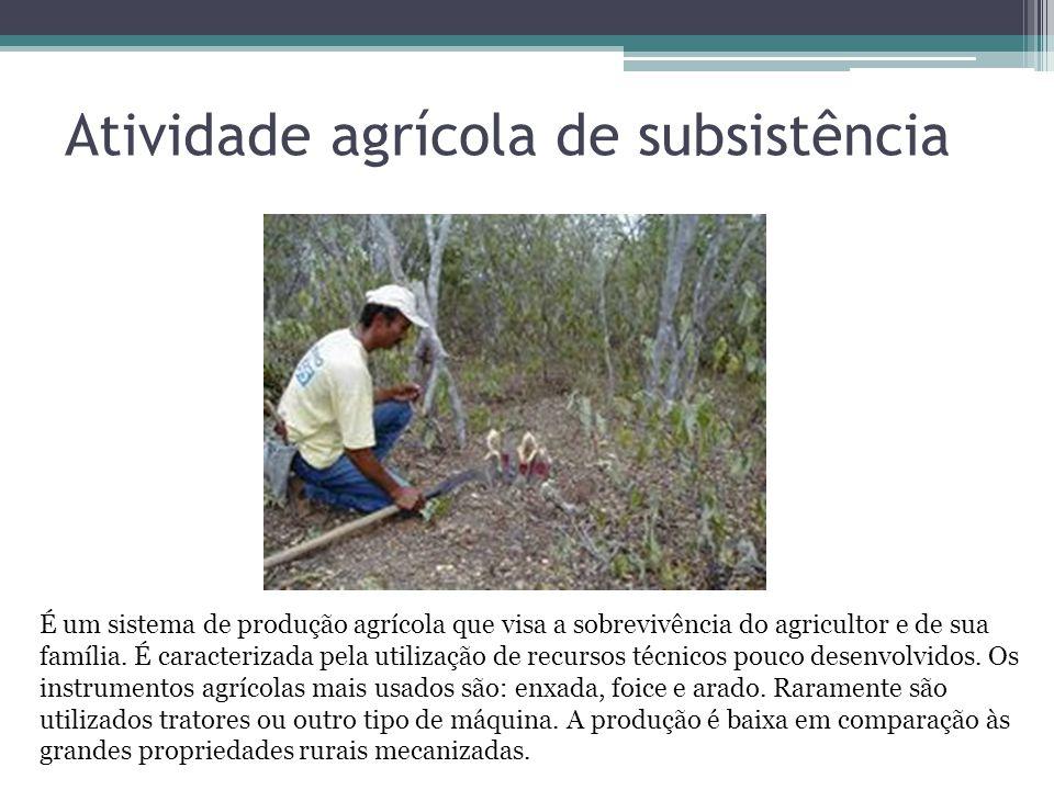 Atividade agrícola de subsistência