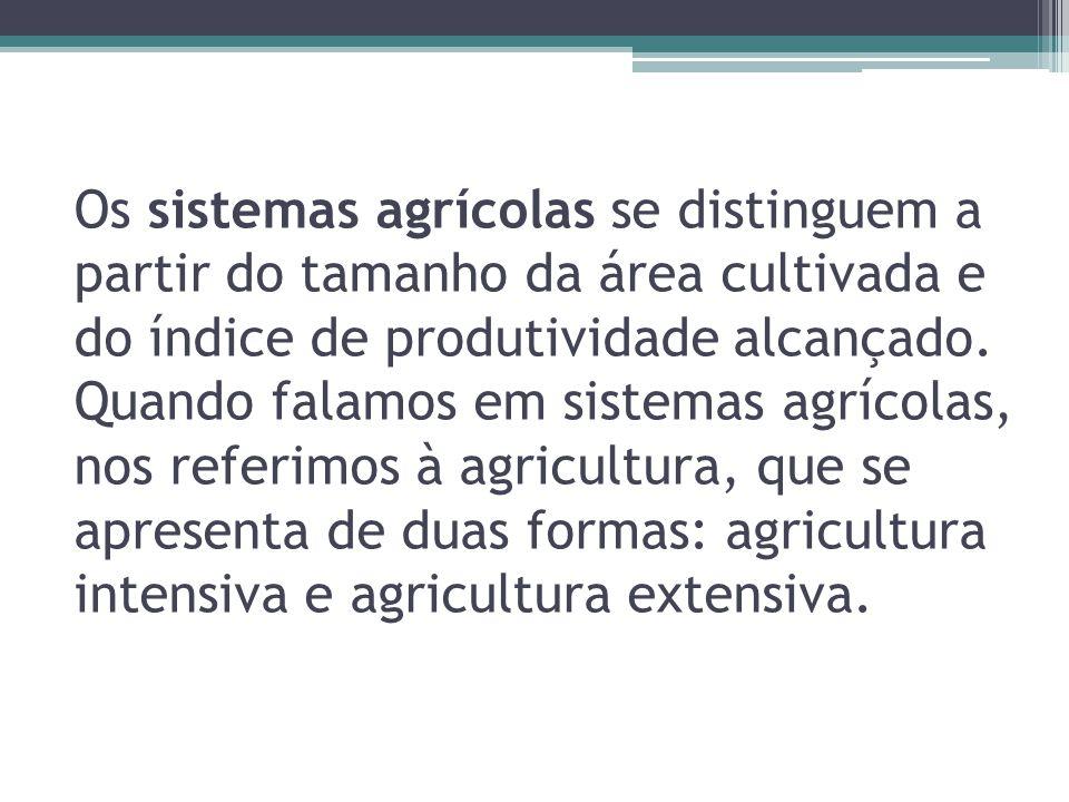 Os sistemas agrícolas se distinguem a partir do tamanho da área cultivada e do índice de produtividade alcançado.