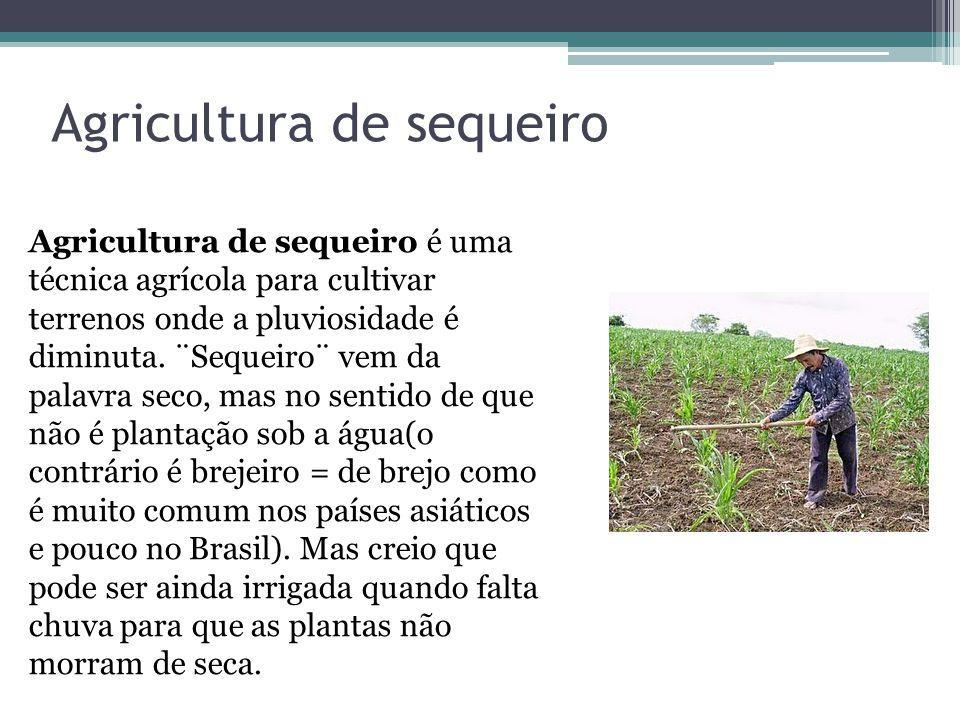 Agricultura de sequeiro